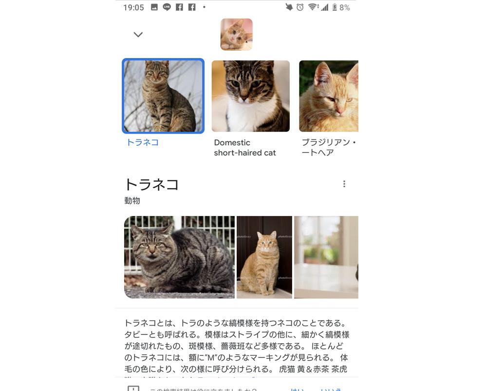 google_gazo-12.jpg
